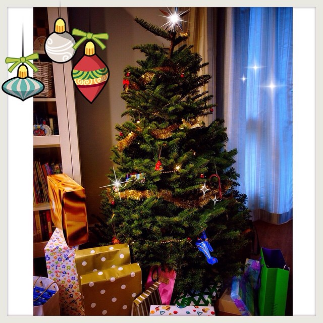 Christmas Tree from Far East Flora