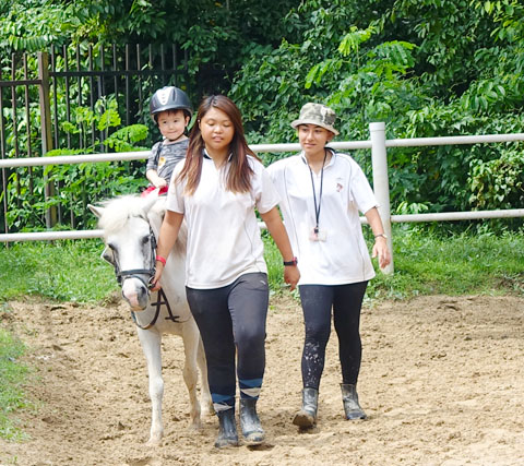 Horseriding at Gallop Stable